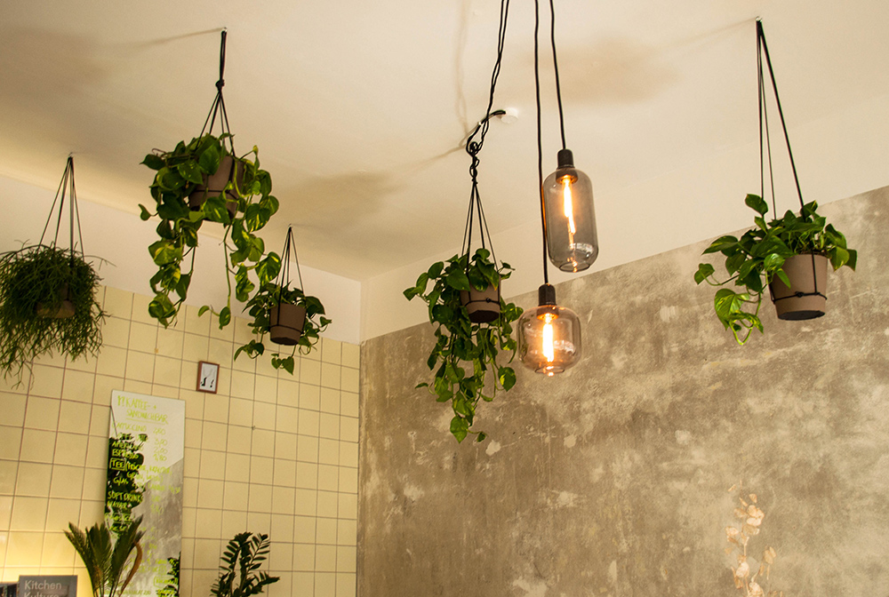 Herbary-Cafe-Y-Lea-Lou-7