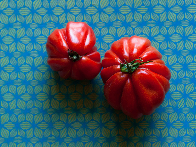 Tomato-avocado-salad-lea-lou-2