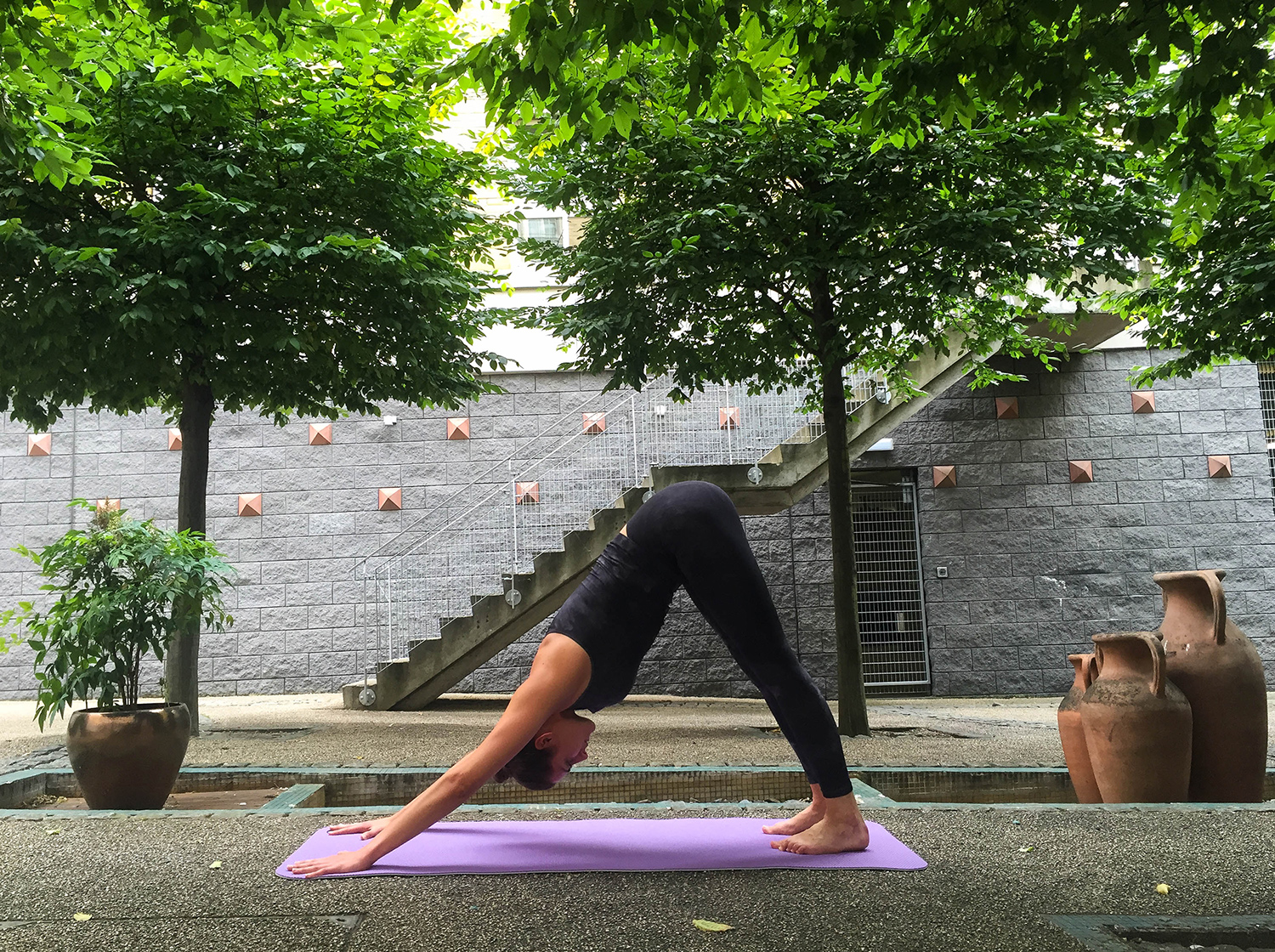 yoga-for-every-day-downward-dog